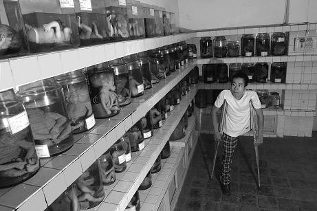 AGENT ORANGE VIET-NAM: OKINAWA, LES PREUVES S'ACCUMULENT (André BOUNY) dans REFLEXIONS PERSONNELLES ORANGE