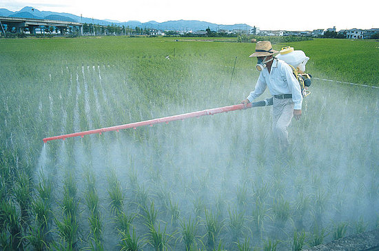 PESTICIDES: UN CHANGEMENT ?...MAIS QUAND ? dans REFLEXIONS PERSONNELLES PESTICIDES
