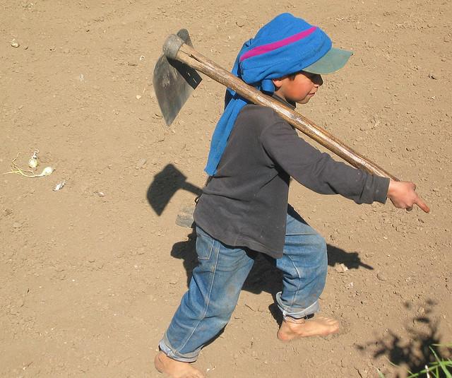 LES ENFANTS-ESCLAVES DE L'AGRICULTURE AMERICAINE: UN BEAU SCANDALE ! dans REFLEXIONS PERSONNELLES enfant-esclave