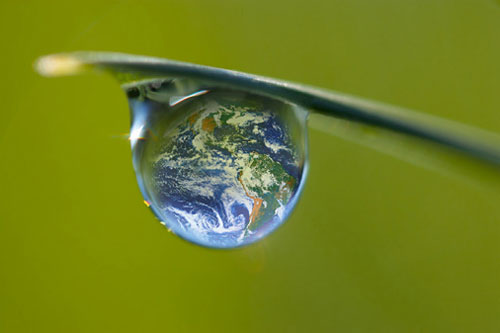 LE GOUVERNEMENT PRECISE SA FEUILLE DE ROUTE POUR LA TRANSITION ECOLOGIQUE dans REFLEXIONS PERSONNELLES ecologie