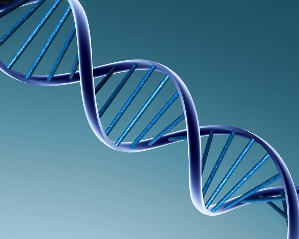 L'ADN POUBELLE SE REBELLE (