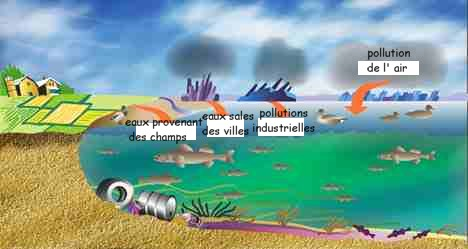 LA POLLUTION INDUSTRIELLE FAIT AUTANT DE RAVAGES SUR LA SANTE QUE LE PALUDISME (Audrey GARRIC / lemonde.fr) dans REFLEXIONS PERSONNELLES pollution1