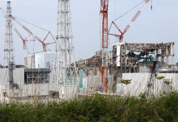 FUKUSHIMA: UN POISSON PRESENTE UN NIVEAU IMPRESSIONNANT DE RADIOACTIVITE...PAS ETONNANT dans REFLEXIONS PERSONNELLES fukushima