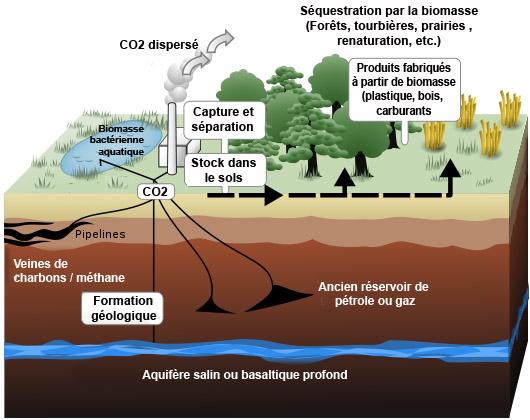 METTEZ-MOI UNE TONNE DE CO2 ! (Jean-Luc PORQUET / Le Canard Enchaîné / Mercredi 24 avril 2013) dans REFLEXIONS PERSONNELLES schemapuitsdecarbonearntzenfr
