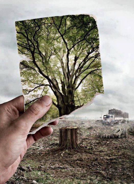 Le GIEC A REMIS SON DERNIER RAPPORT: RIEN DE NOUVEAU ! ON SAIT DEJA QU'IL EST TROP TARD ! (Thierry LAMIREAU / lesoufflecestmavie) dans REFLEXIONS PERSONNELLES arbre-destruction
