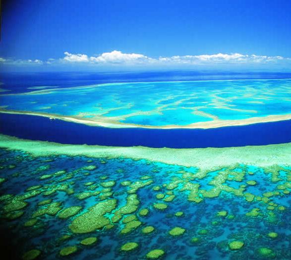 Barrière de corail Australienne
