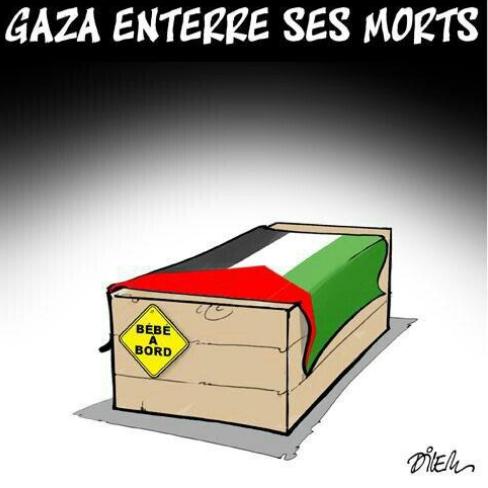 Dessin du dessinateur Dilem Ali sur GAZA