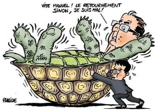 VALLS et la tortue HOLLANDE