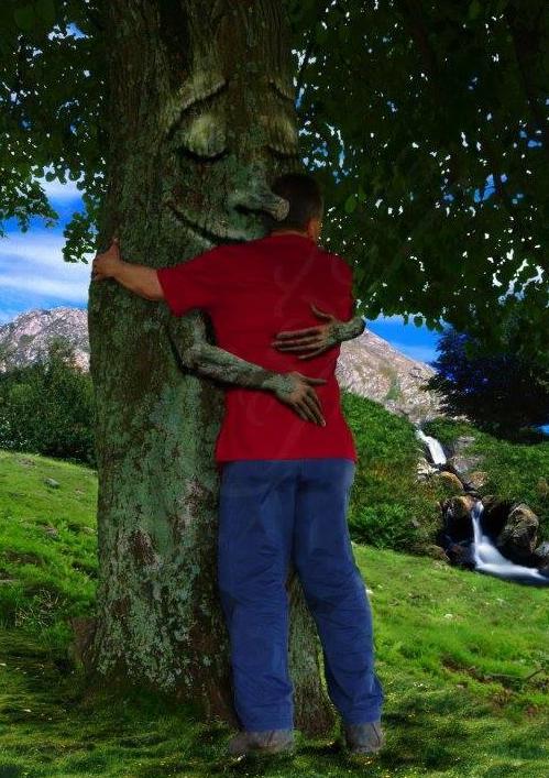 L'arbre et l'homme