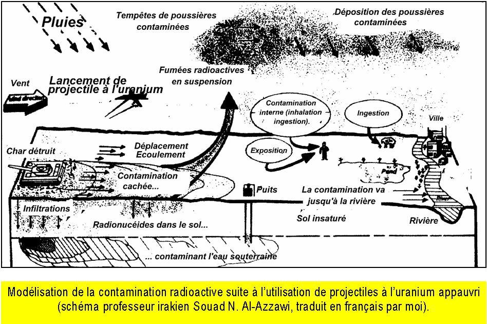 Modélisation de la contamination radioactive suite à l'utilisation de projectiles à l'uranium appauvri