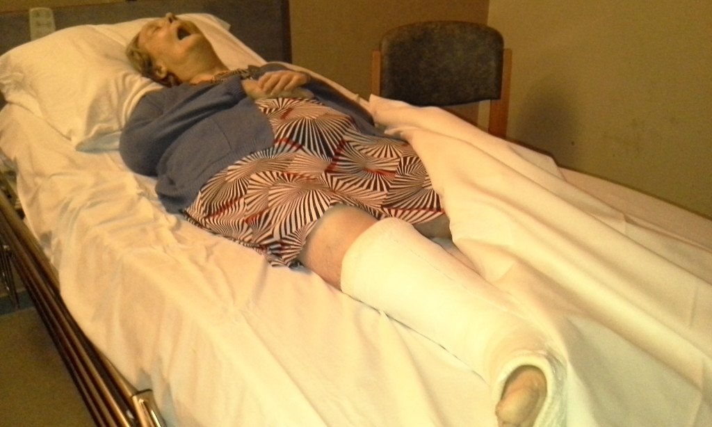 Madame LAMIREAU morte en EHPAD