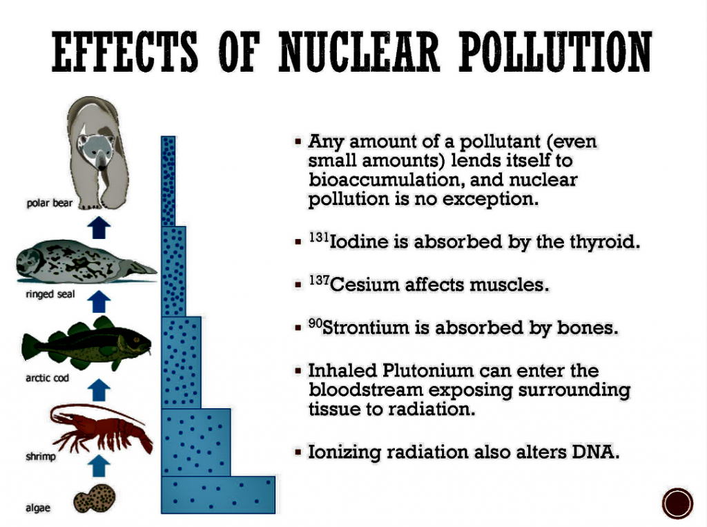 Effects of Nuclear Pollutionpng